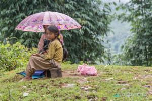 Момичента продават плодове в гората - SAPA