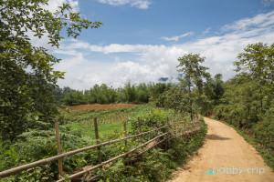 Трекинг през SAPA 4 - Виетнам